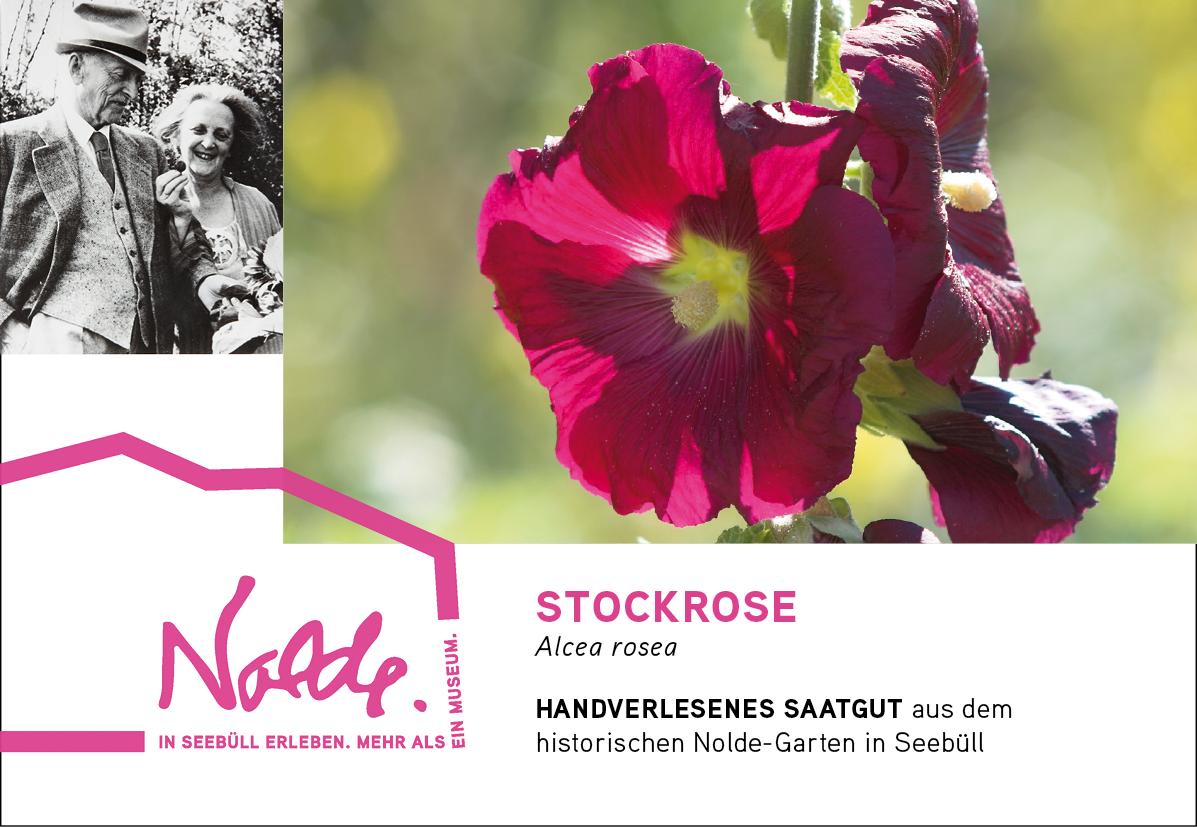 Seebüller Saatgut Stockrose / Alcea rosea