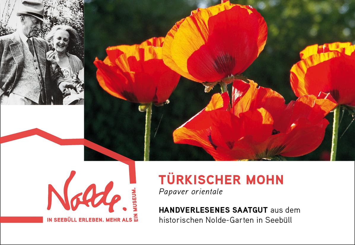 Seebüller Saatgut Türkischer Mohn / Papaver orientale
